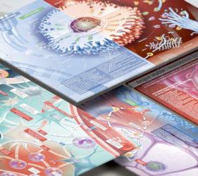 illustration-presse-medicale-scientifique-aim-actualite-innovation-medecine-03