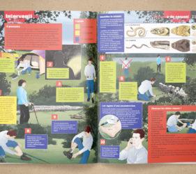 illustration-medicale-scientifique-secourisme-morsure-serpents-magazine-jsp-presse-00